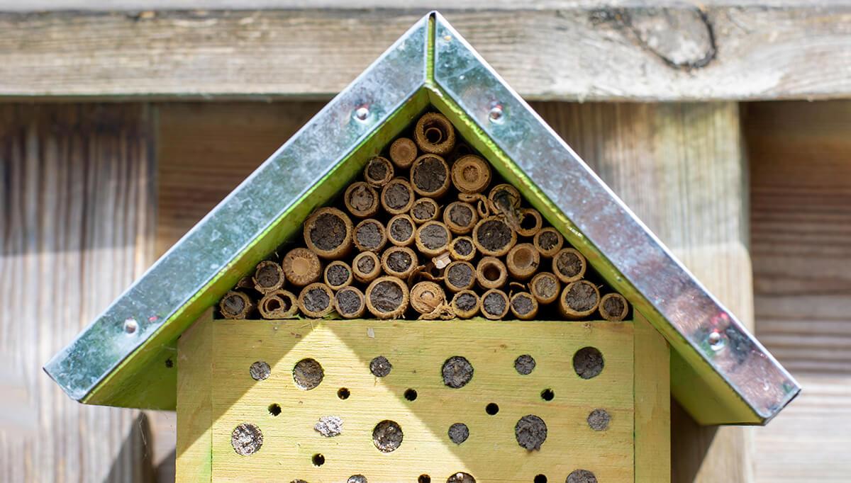 Wildbienenhotel Nestverschluß